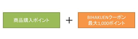 BIHAKUENクーポンコードで付与されるポイント